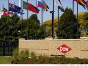 Dow Chemical, fined $2 million for failing to disclose 249 reports of chlorpyrifos poisoning, the same chemical now blamed for the deaths of seven tourists at the Downtown Inn, Chiang Mai